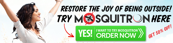 Order Mosquitron Now