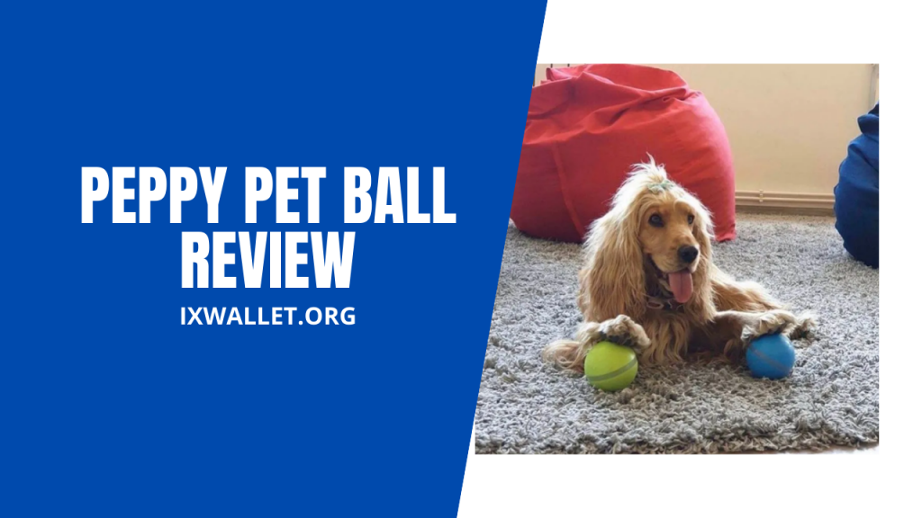 Peppy Pet Ball Review
